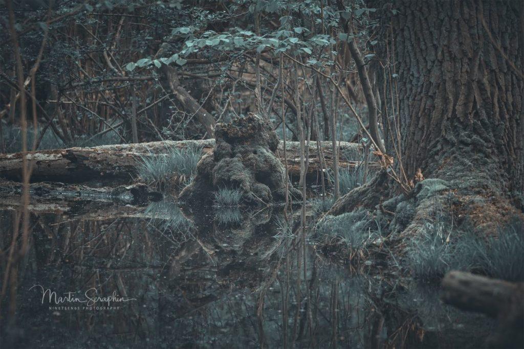Landschaft & Natur 114