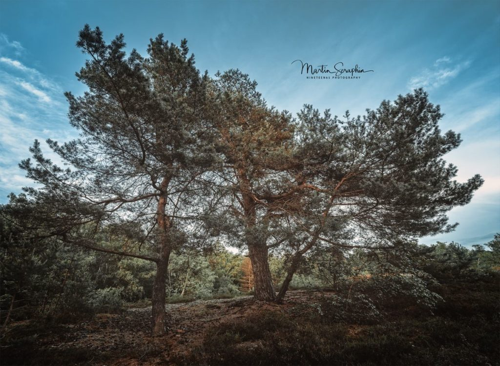 Landschaft & Natur 19
