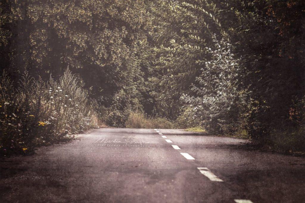 Landschaft & Natur 64