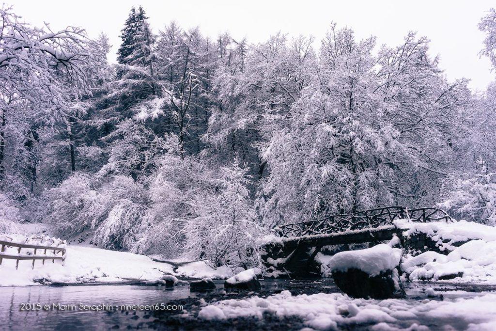 Landschaft & Natur 110