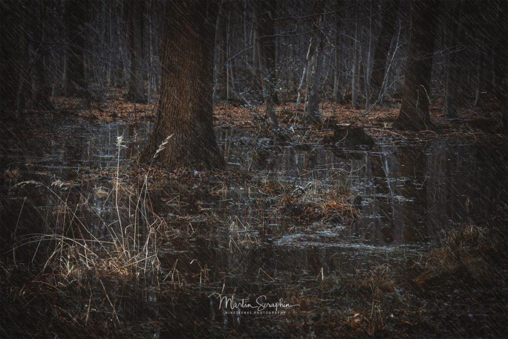 Landschaft & Natur 95