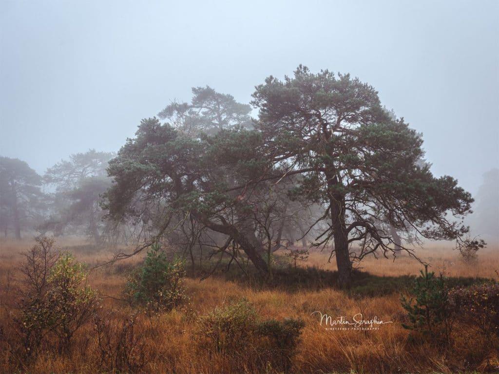 Landschaft & Natur 122