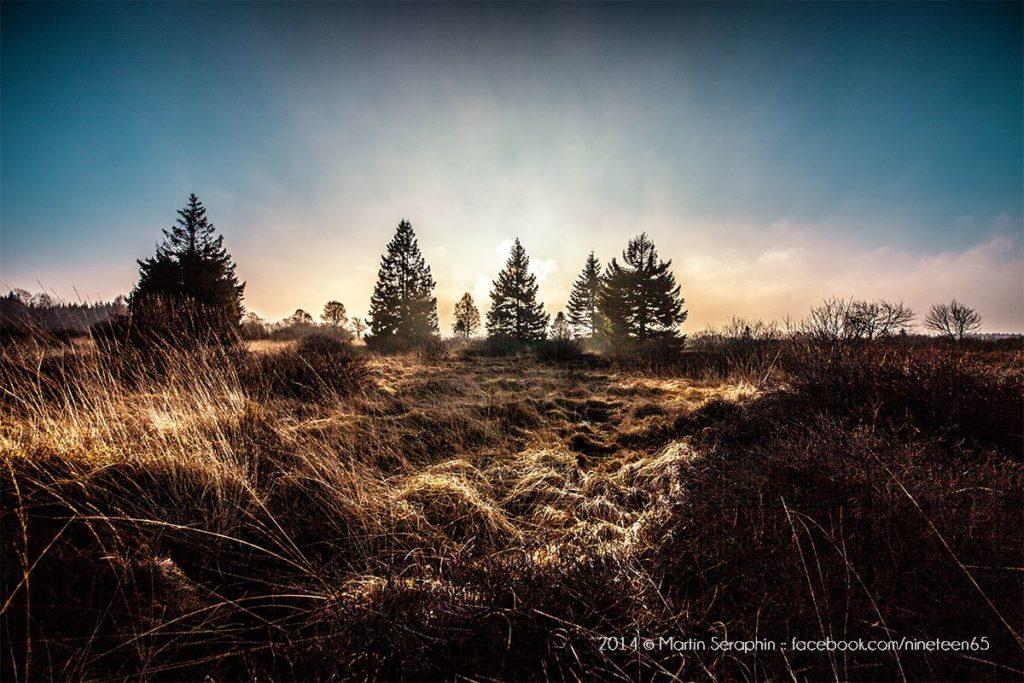 Landschaft & Natur 36