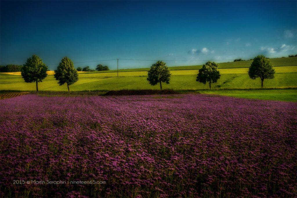 Landschaft & Natur 129