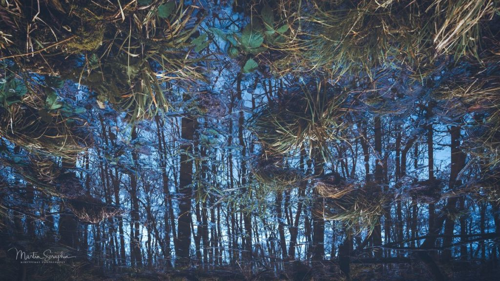 Landschaft & Natur 98