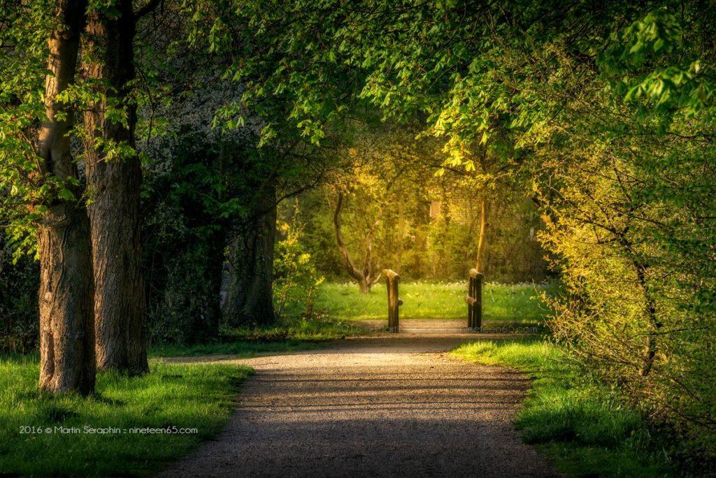 Landschaft & Natur 121