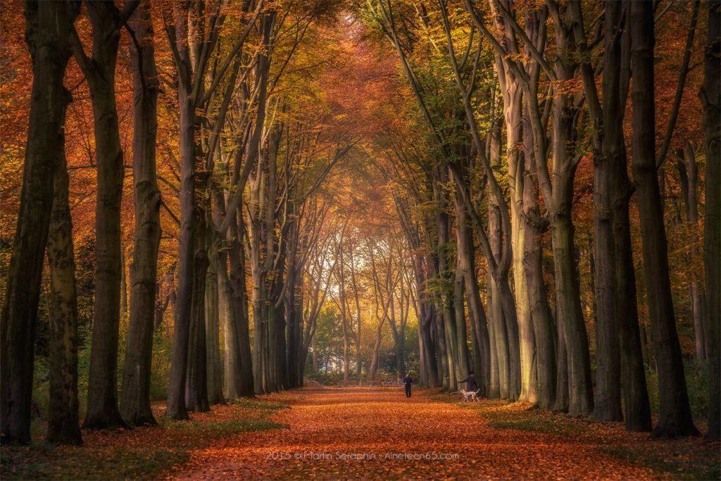 Landschaft & Natur 93