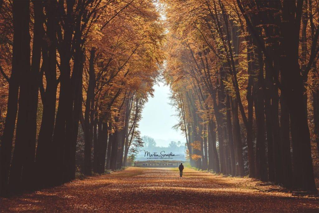 Landschaft & Natur 67