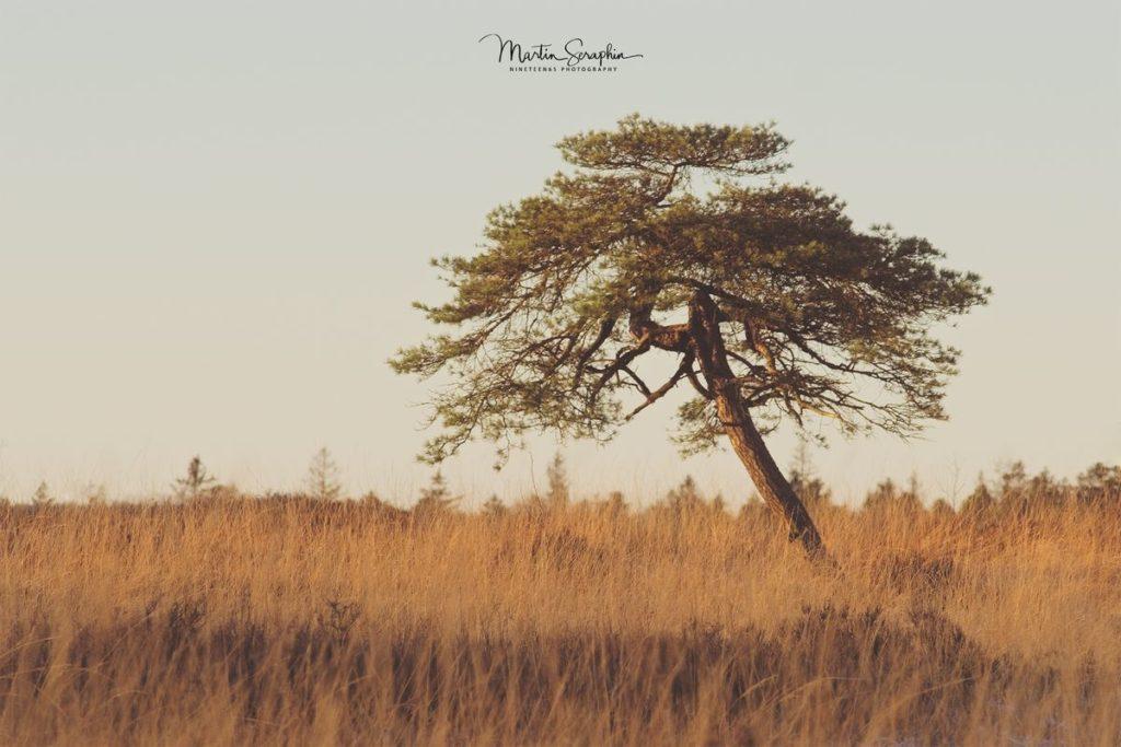 Landschaft & Natur 33