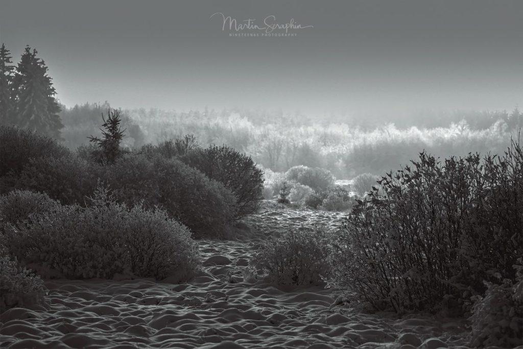 Landschaft & Natur 130