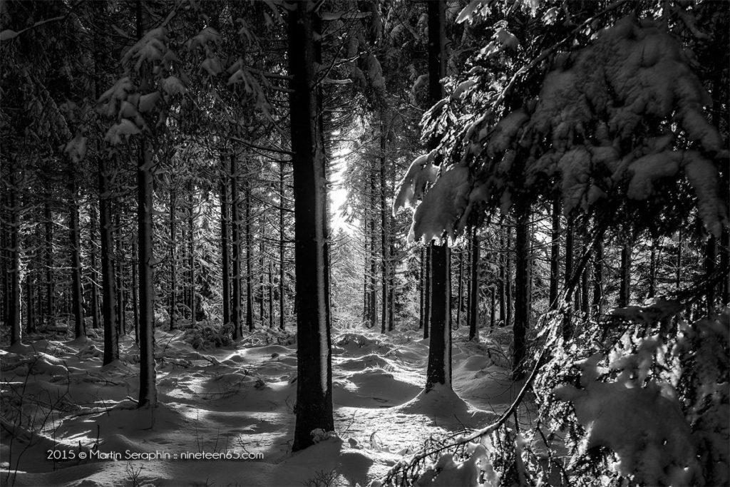 Landschaft & Natur 119