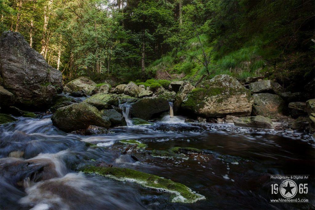 Landschaft & Natur 39