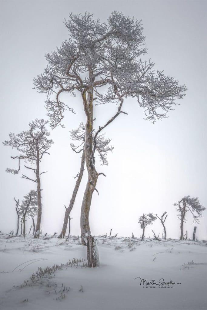 Landschaft & Natur 38