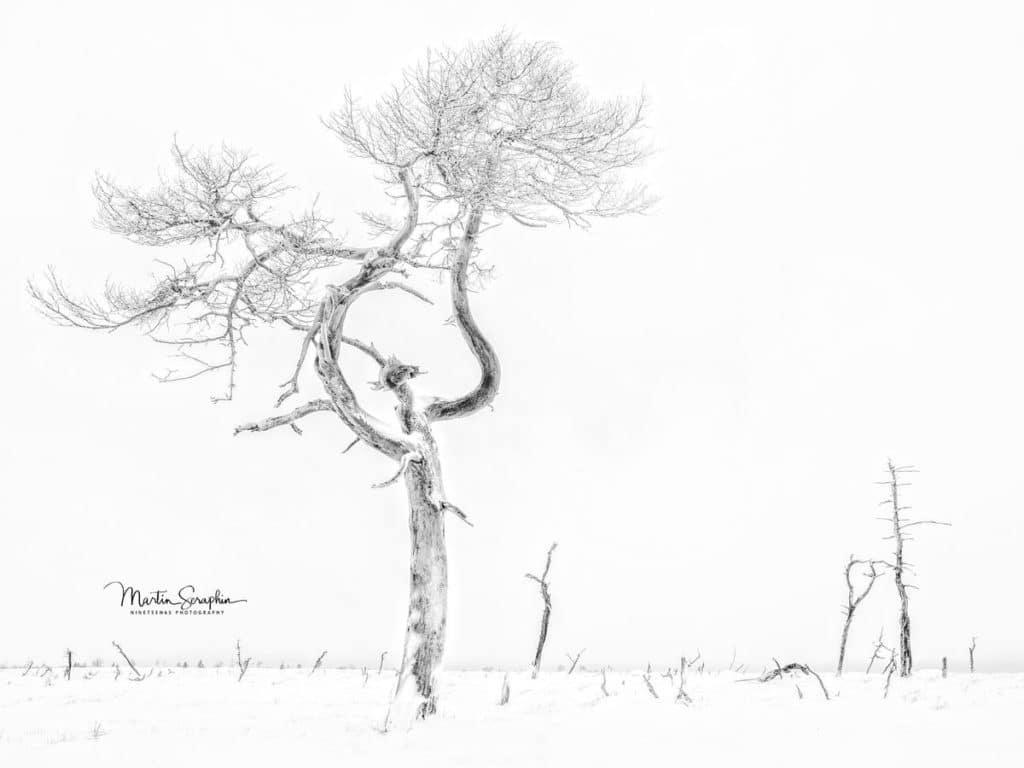 Landschaft & Natur 14