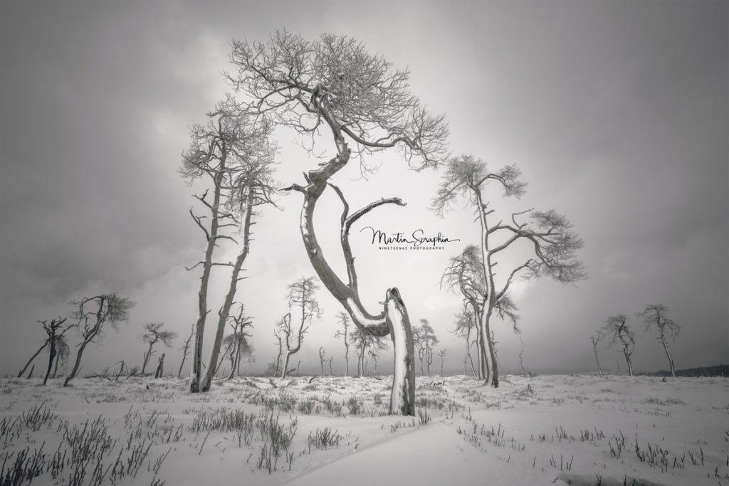 Landschaft & Natur 71