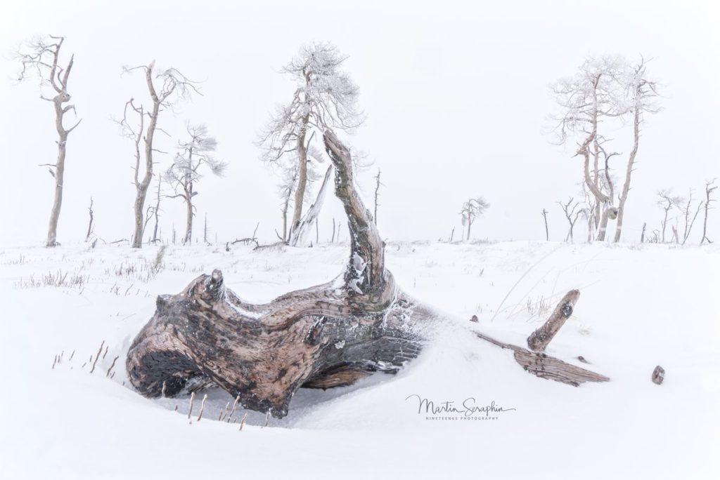 Landschaft & Natur 143