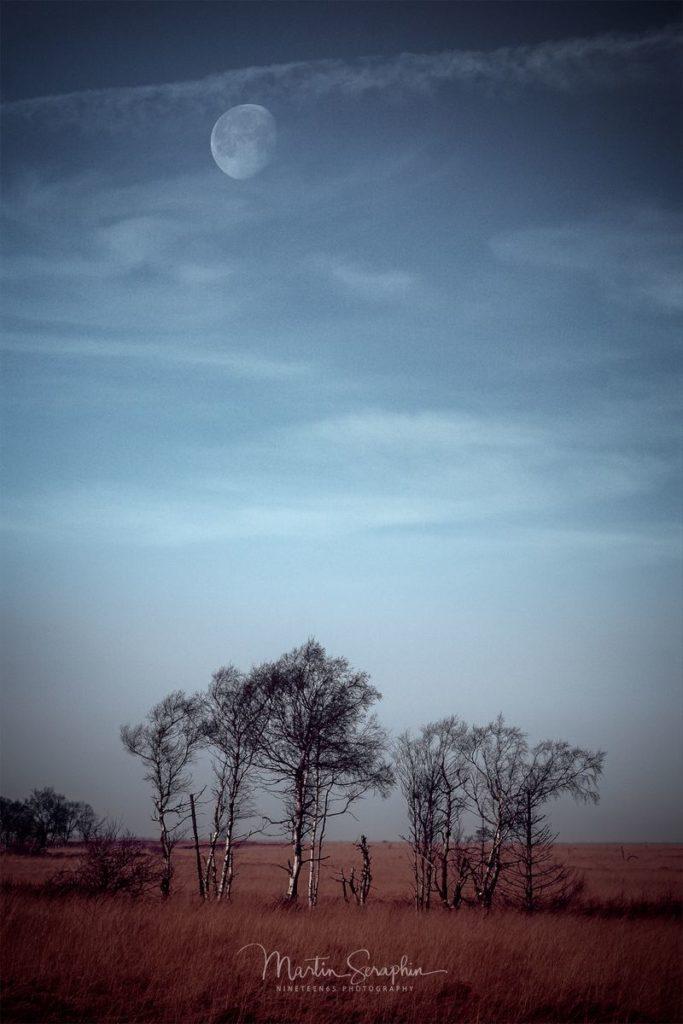 Landschaft & Natur 59