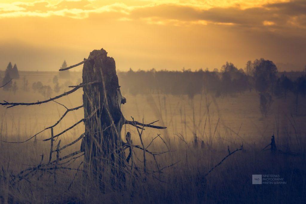 Landschaft & Natur 92