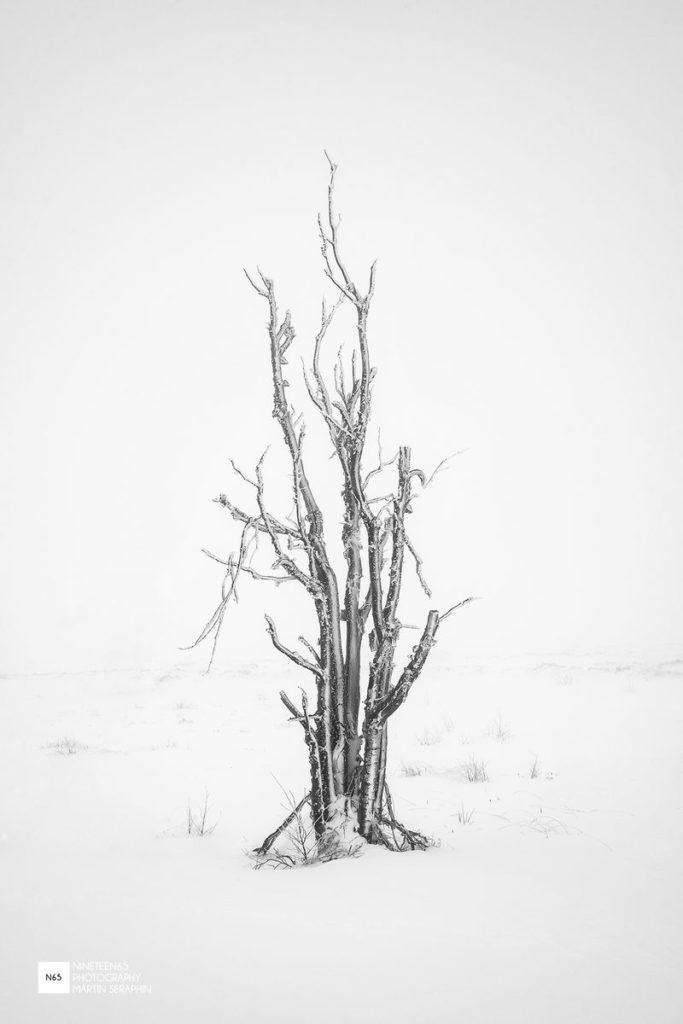 Landschaft & Natur 105