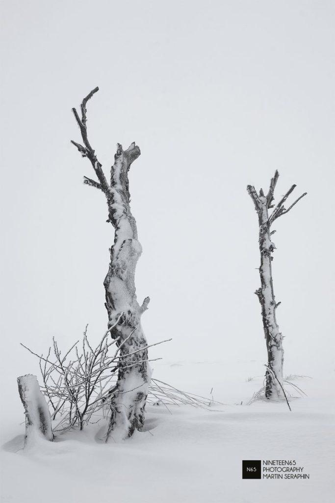 Landschaft & Natur 26