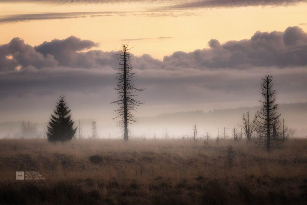 Landschaft & Natur 100