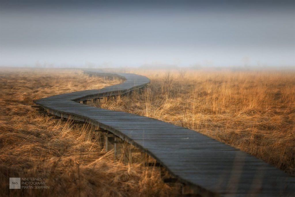 Landschaft & Natur 85